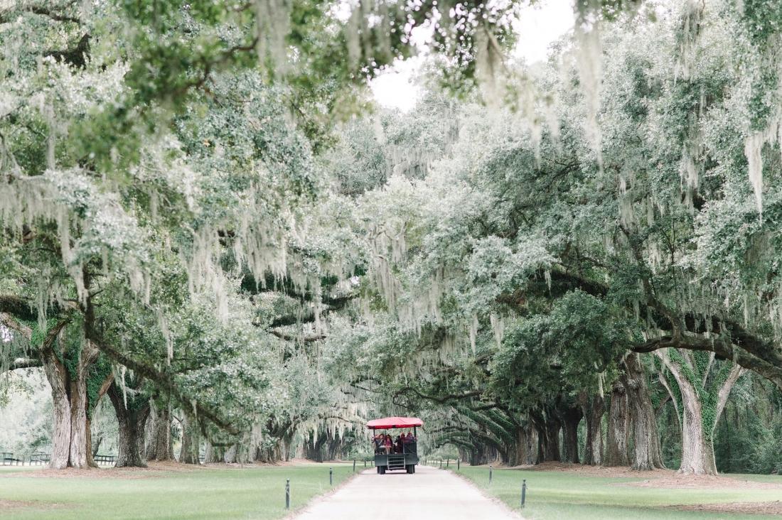 thomas-and-callas-boone-hall-plantation-wedding-by-charleston-wedding-photographers-aaron-and-jillian-photography-_0021